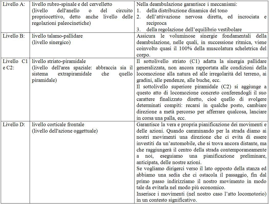 2) Luria A.R. – Il ripristino della funzione ad opera della riorganizzazione dei sistemi funzionali